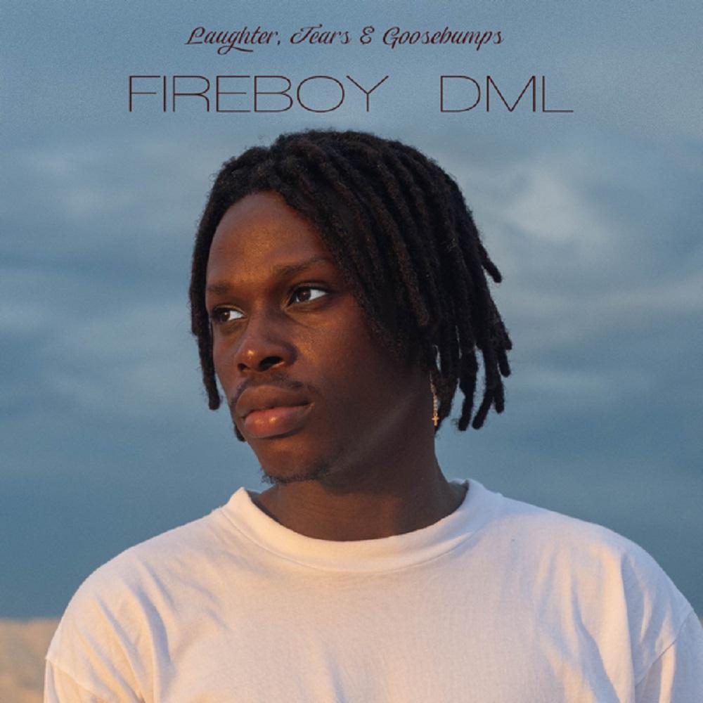 Fire Boy DML – Need You