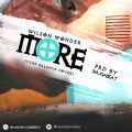 Music: Wilson Wonder – More (Ycee Balance Cover)