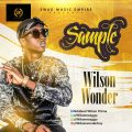Music: Wilson Wonder – Sample