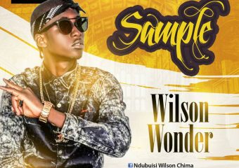Wilson Wonder – Sample