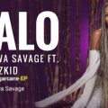 Music: Tiwa Savage ft. Wizkid – Ma Lo (prod. Spellz)