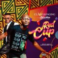 Music: ClassyKinging Ft. DJ Kaywise – Red Cup