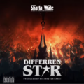 Music: Shatta Wale – Different Star