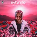 Music + Video: Picazo – Rest Of Mind
