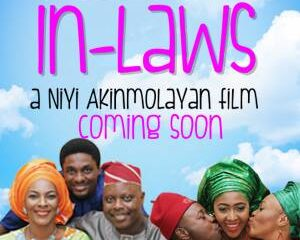 Meet the In-Laws Movie